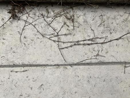 常春藤侵蝕的牆壁