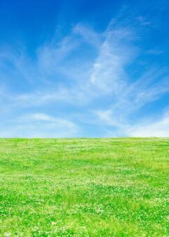 푸른 하늘과 클로버 초원 _3