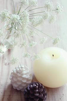 흰 꽃과 촛불