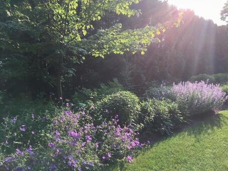 햇살 정원