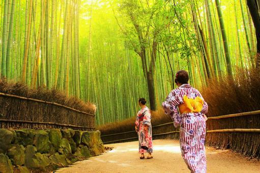 Kyoto ~ Arashiyama ~