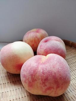Peach Kanoiwa White Peach 9
