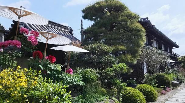 Taima-dera garden