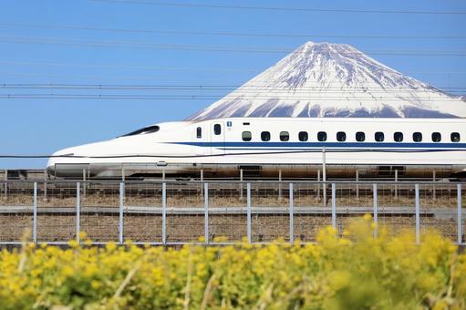 Tokaido Shinkansen, Mt. Fuji and rape blossoms