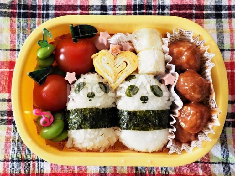 幼稚園児のお弁当の写真