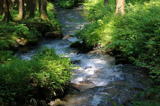 The murmuring of an unnamed stream