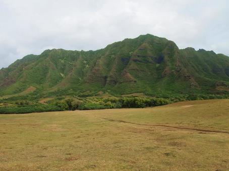 하와이 쿠 알로아 목장