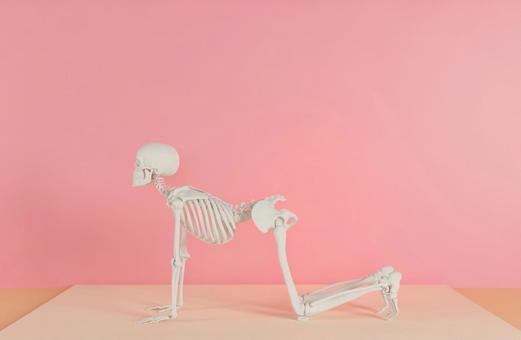 Skeleton who decides yoga pose I