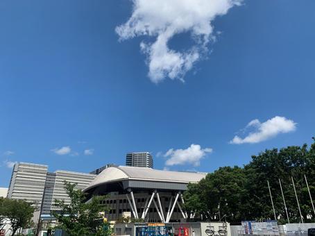 Tokyo Paralympics Wheelchair Tennis Venue (Ariake Tennis Forest / Ariake Coliseum)