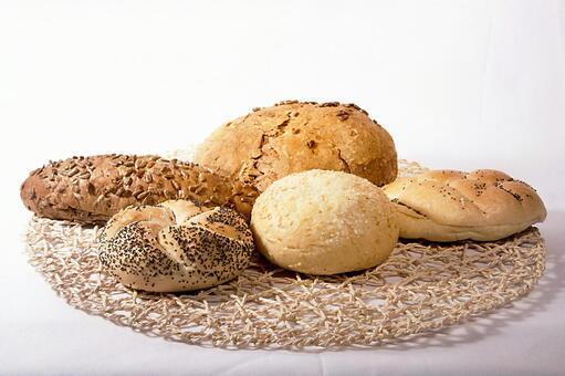 하드 빵 2