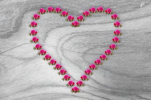 Frame, wood grain, heart, rose