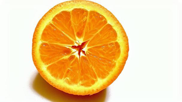 橙色中央白色背景
