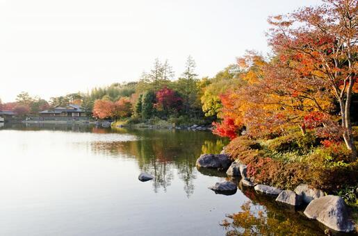 Fall scenery 17