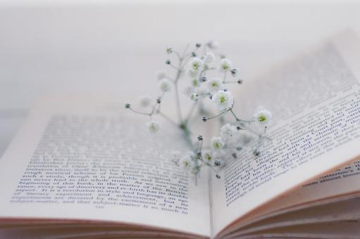 Old book and blurred grass