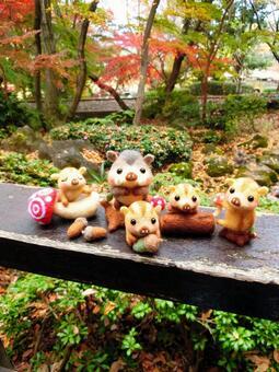 秋葉和野豬4