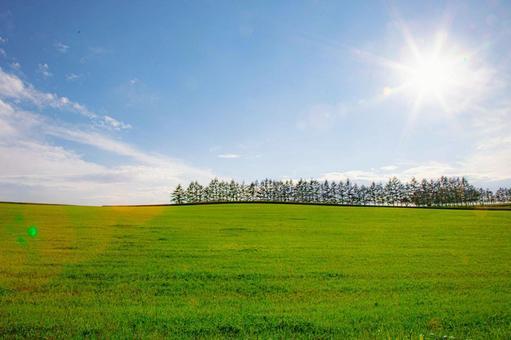 Pastures and blue sky in Tokachi, Hokkaido