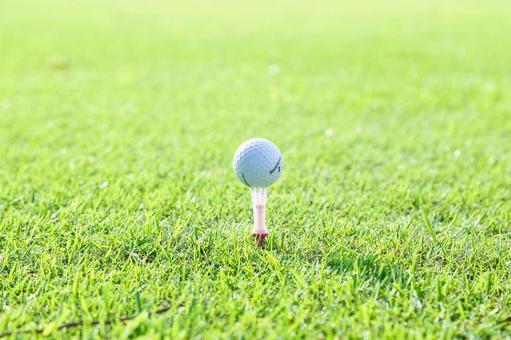 Grass and golf balls 17