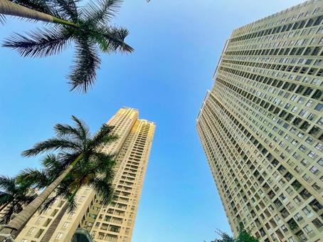 High-rise apartment, palm trees, blue sky