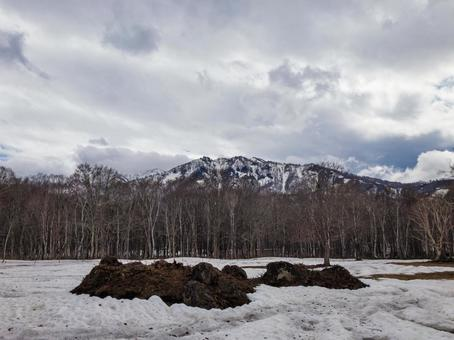 Sasagamine Plateau in April with snow