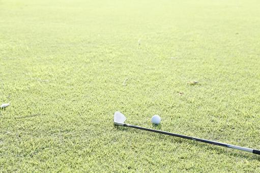 Grass club and golf ball 10
