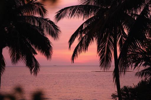Beach resort 281