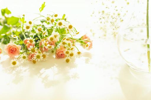 Image of spring Pink rose, gypsophila, matricaria