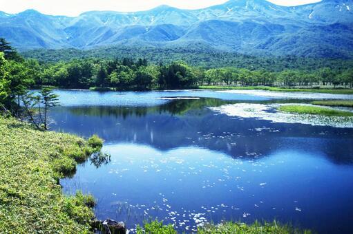 파란 눈부신 세계 자연 유산 시레토코