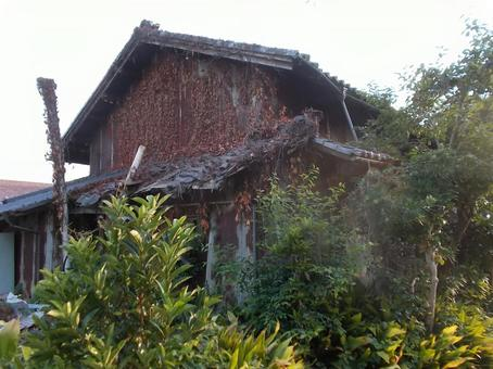 Old vacant house covered with vegetation