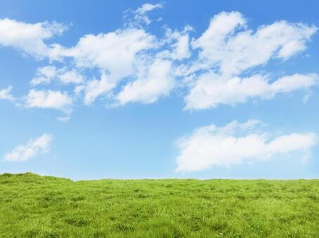 Meadow, blue sky and clouds