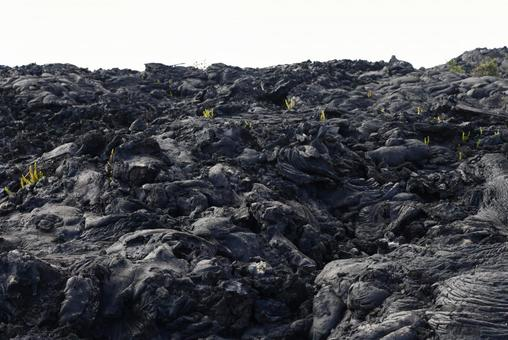 Lava on the Chain of Craters Road, Hawaii