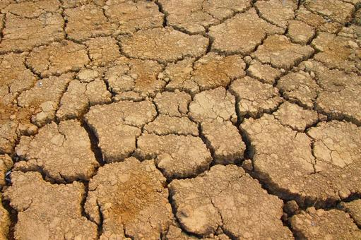 가뭄으로 건조한 밭