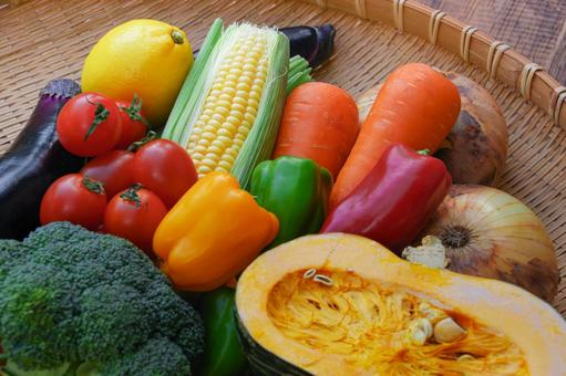 Lots of colorful vegetables