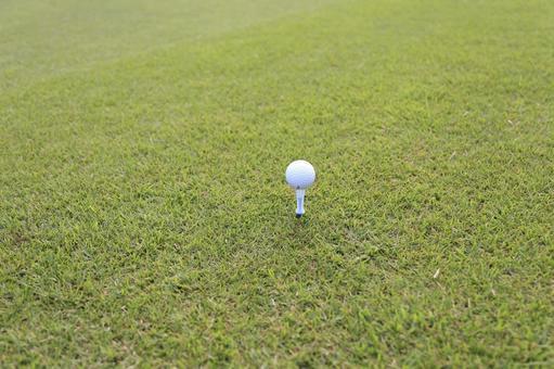 Grass and golf ball 4