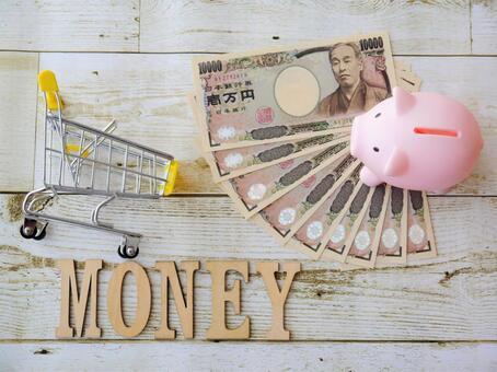 MONEY / Money (14) Money / Piggy Bank / Shopping Cart