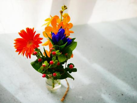 Sunlight flowers and vases