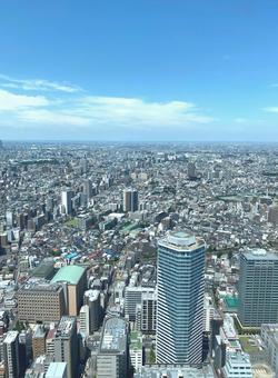 도쿄 고층 빌딩 군 세로 푸른 하늘 여름