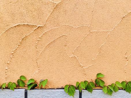 오렌지 벽 및 녹색 배경