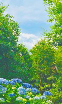 Hydrangea blooming landscape Watercolor style hydrangea vertical background