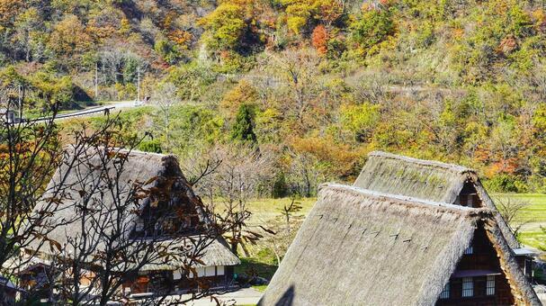 스가 누마 갓 쇼즈 쿠리 마을의 단풍