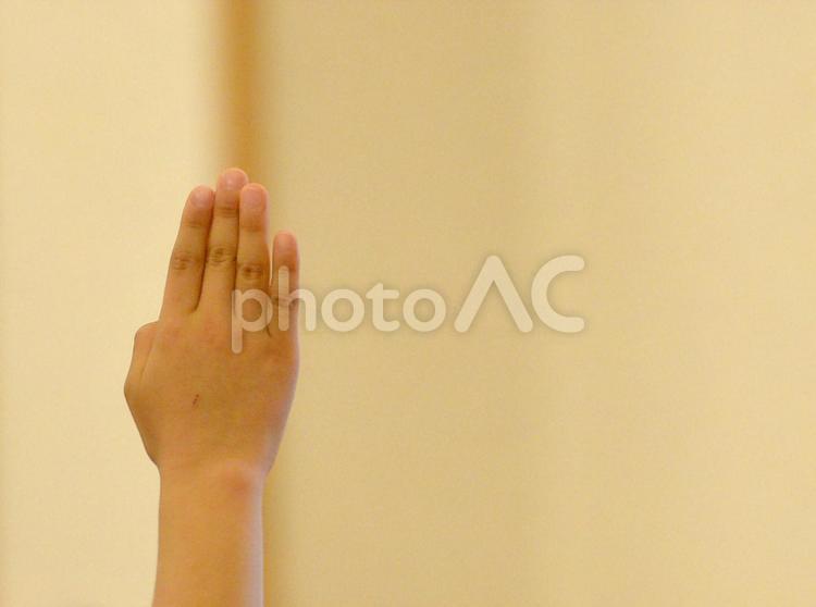 挙手 発言の写真