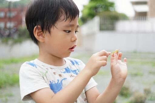 The boy who caught grasshopper