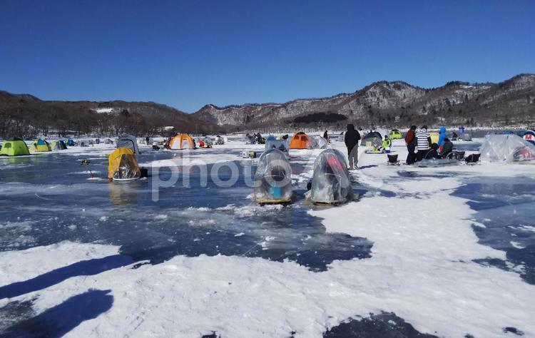 湖の冬景色の写真