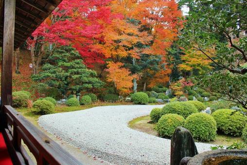 Kyoto's autumn leaves Manshuin Monzeki