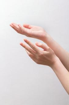 1至手掌直接顶端