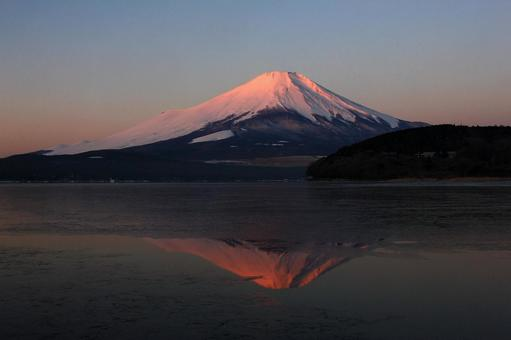 Upside-down red Fuji