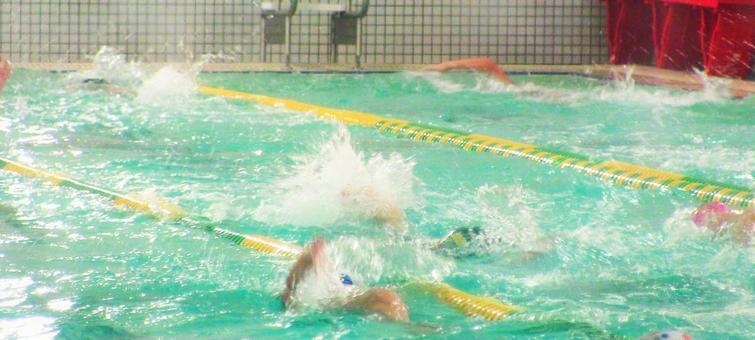 A scene of a swimming school
