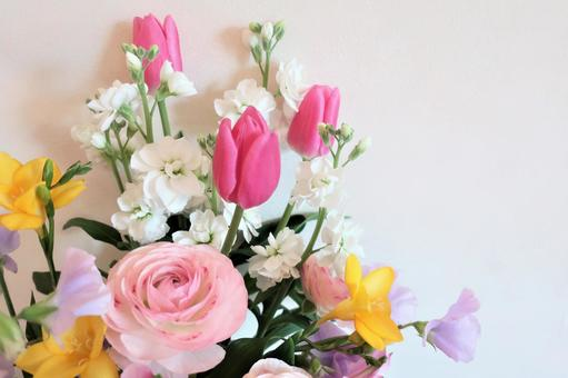 봄빛의 꽃