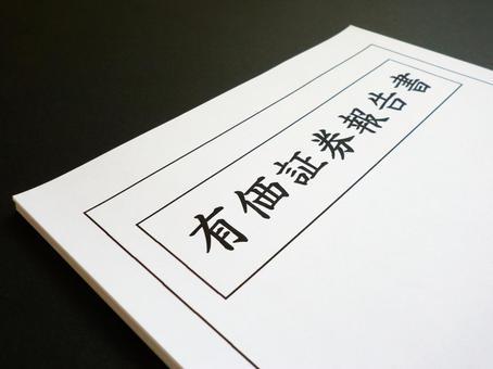 Securities report
