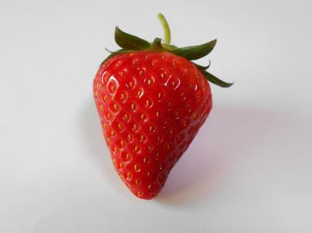 딸기 (15)