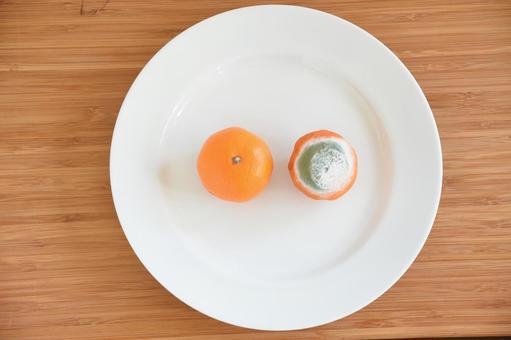 橘子已經發霉(藍黴和白黴)
